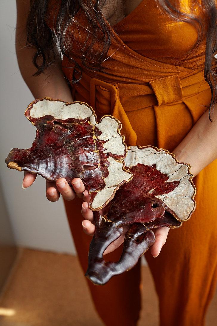 Aylen + shrooms - web_Photo cred_Sara Ki