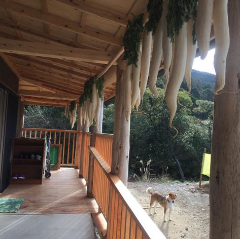 玄関のスロープの上には漬物用の大根が。畑の野菜を干したり加工したり、季節の巡りが感じられます