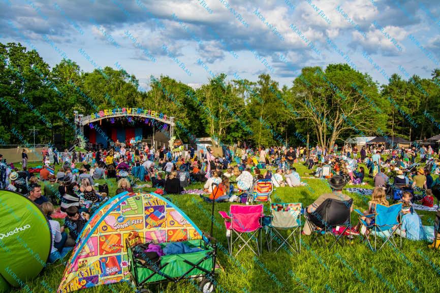 Festival Photography - Elderflower Fields