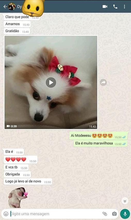 WhatsApp Image 2020-12-30 at 14.59.38.jp