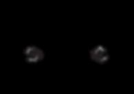 Logo_FietsenJansen[1994]2-01.png