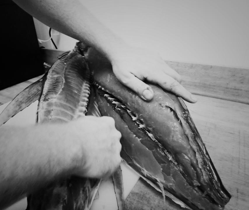 1-filet-fish
