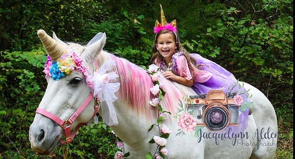 unicorn 2018.jpg