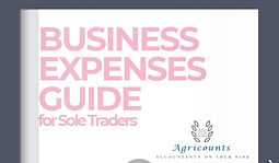 Business expenses guide photo.jpg