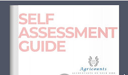 Self Assessment Guide