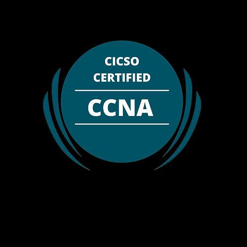 Cisco Certified Network Associate (200-301)