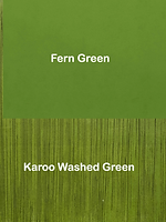 Fern and Karoo Washed Green.png