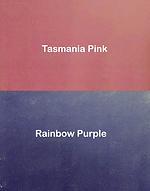 Tasmania Pink and Rainbow Purple.png