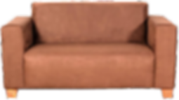Couch, Sofa, 2 Seater