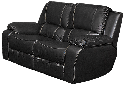 Calgan 2 Seater Static Full Leather Couch