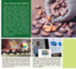 Comafrique-web-pages-6.jpg