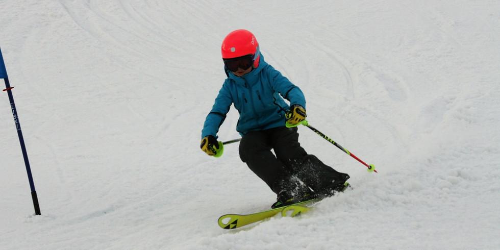 Соревнований  по горным лыжам в дисциплине Боне,  Открытого Первенства Экстрим-парка «Фристайл»