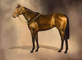 Brigadier Gerard Racehorse