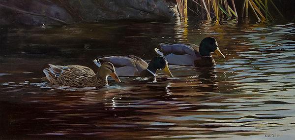 First Light, Mallards. Original wildlife art oil painting