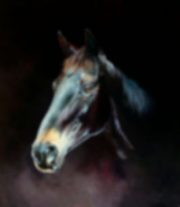 Original oil painting of Grand National winner Many Clouds