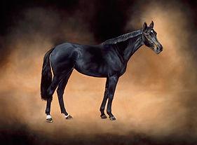 Spirit of Chester Racehorse Portrait