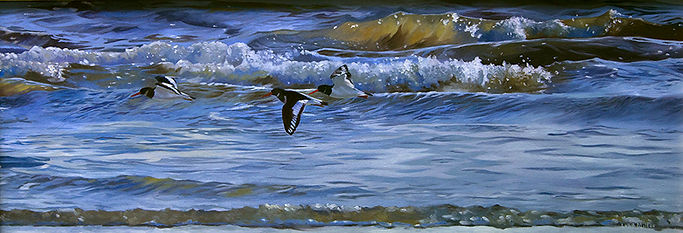 original wildlife art oil painting of oystercatchers