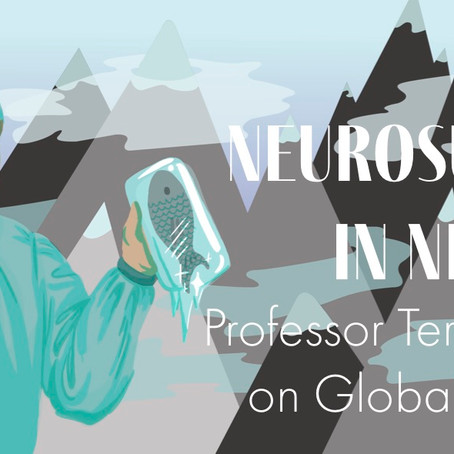 Neurosurgery in Nepal: Professor Terence Hope on Global Surgery