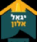 יגאל אלון פיקח בניה
