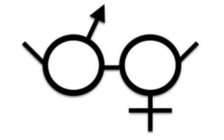 Genderspecs – The Gendered Gaze