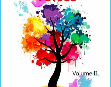 100 Voices Vol. 2