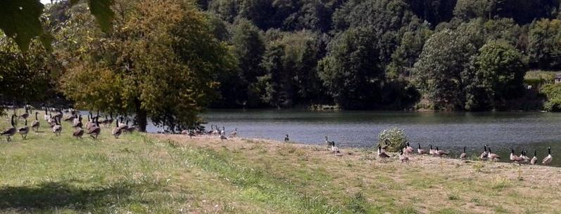 Implantation Barrage Meuse Ardennes Angle et Mont