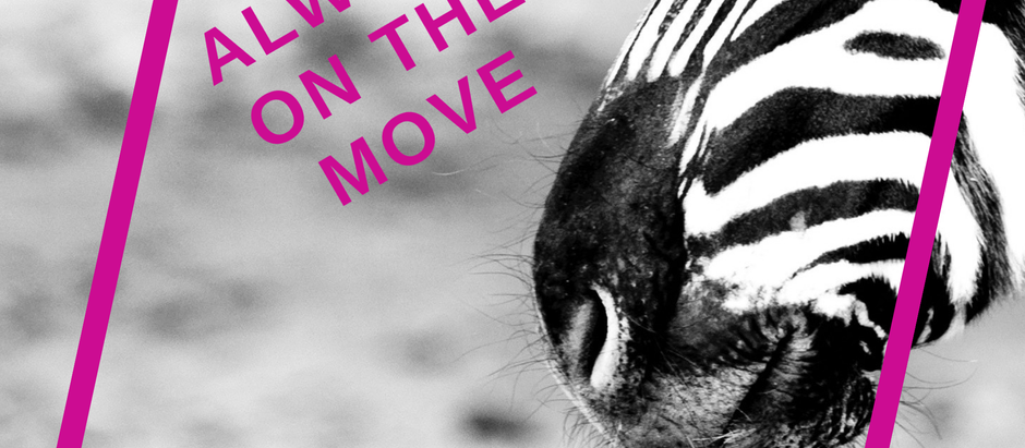 Always on the Move?