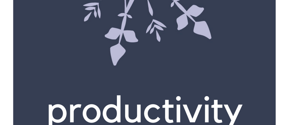 Productivity and the Pandemic