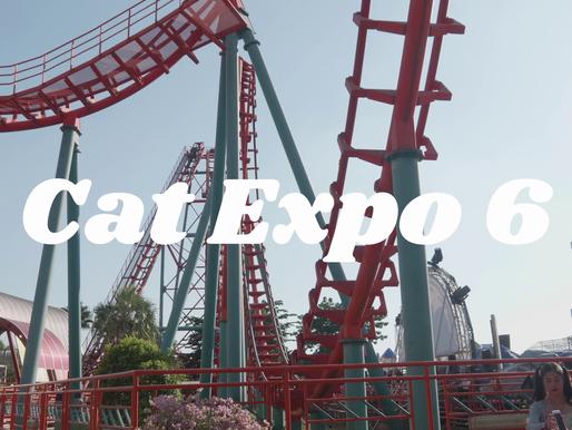 Budweiser Presents Cat Expo 6