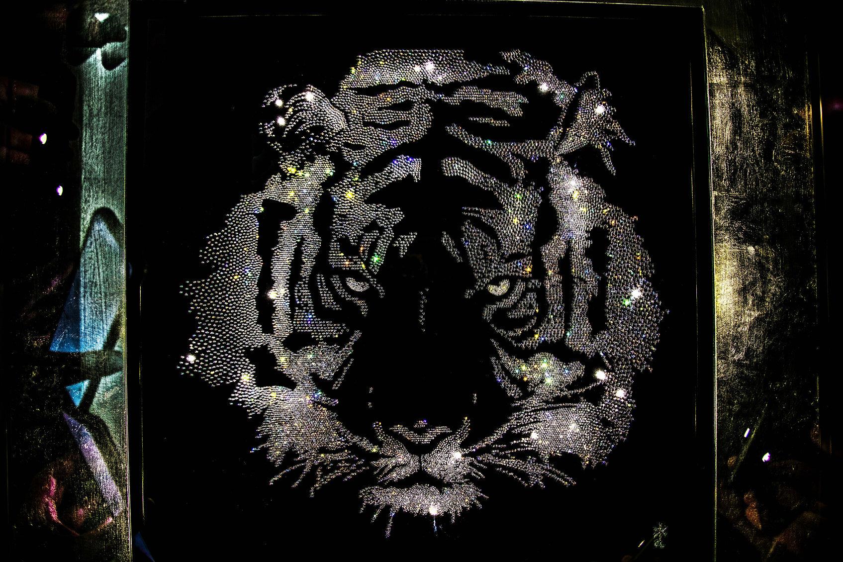 Tiger-8.jpg