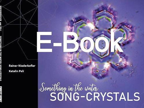 E-Book (DEUTSCH)