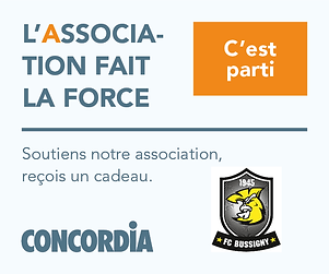 Banner CONCORDIA SITE FC Bussigny300x250