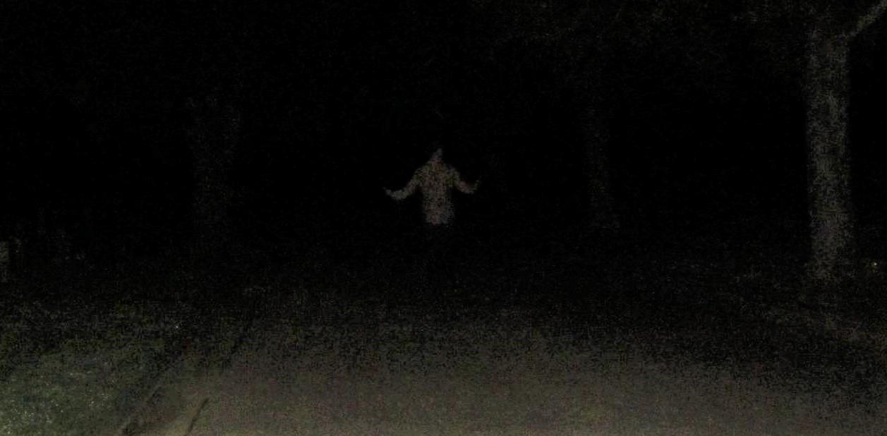 ghost edited