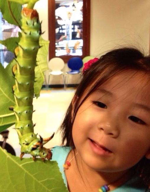 The Caterpillar Lab's Biggest Fans