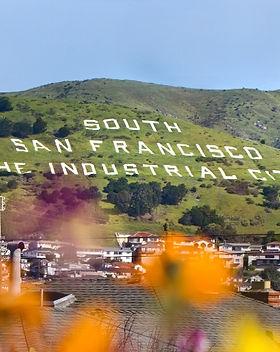 southsf.jpg