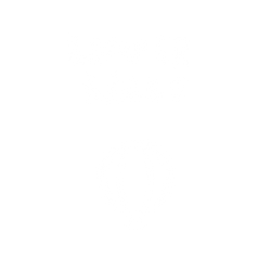 bumperball (1).png
