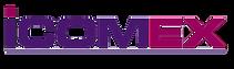 grupodireccion icomex