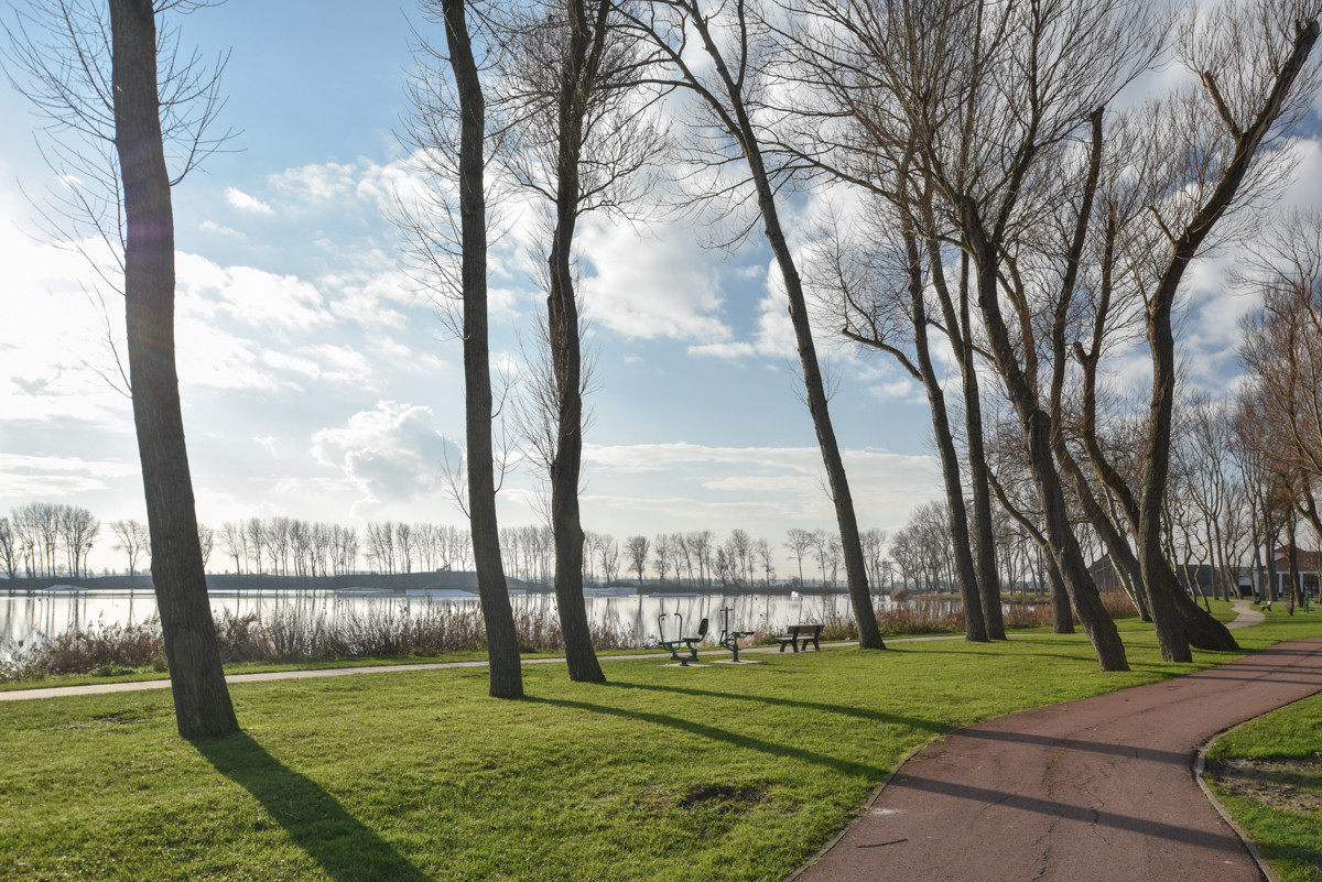 lakefront_LR-1.jpg