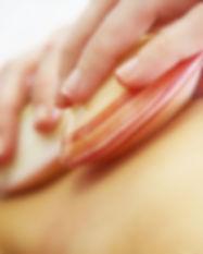 De hotshelmassage is een massage die uitgevoerd wordt met authentieke tijgerklemschelpen. Met deze warme schelpen worden de nek, rug, benen, voeten en armen gemasseerd door gebruik van zachte, afwisselende bewegingen. Eventuele spierspanningen verminderen, het kalmeert het zenuwstelsel en bevordert de bloed- en lymfecirculatie. De perfecte massage om helemaal 'zen' te worden.