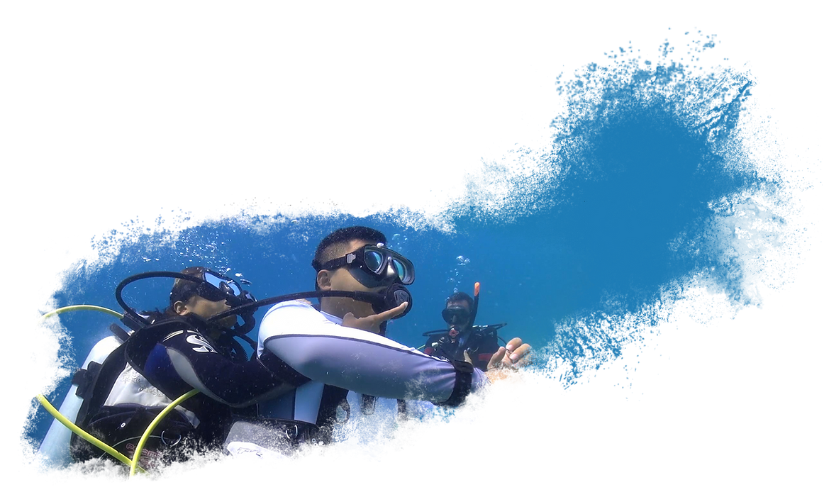 Rescue-Diver-2.png