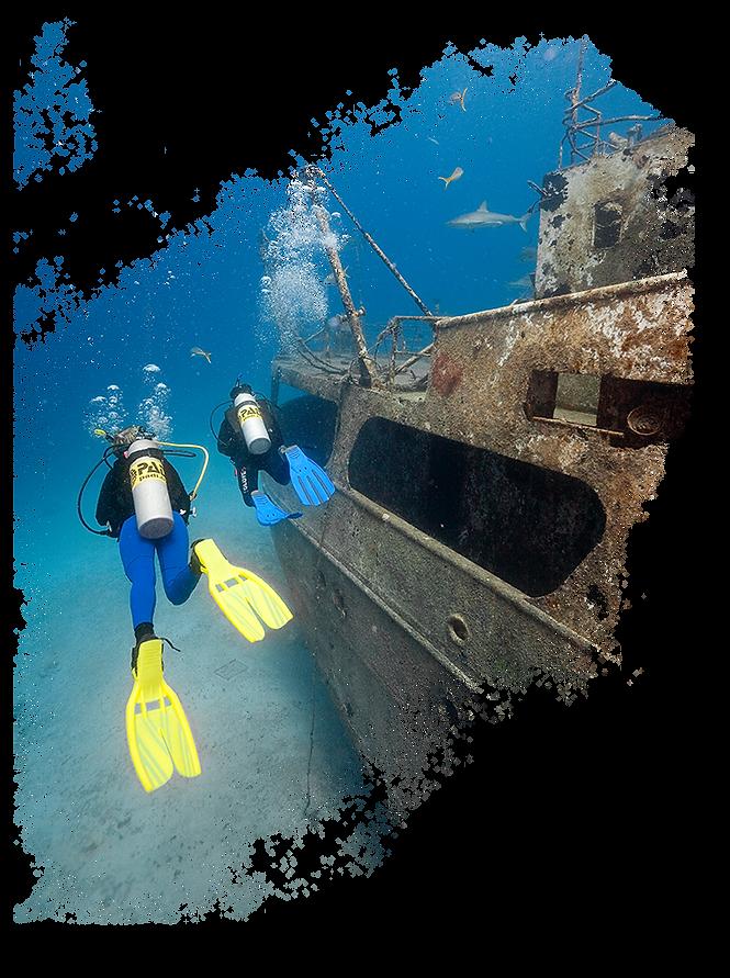 Wreck-Diver.png