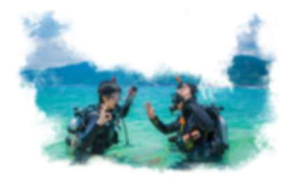 Discover Scuba Diving Image 2.png