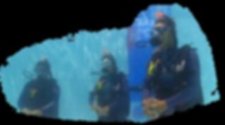 Scuba-Diver-2.png