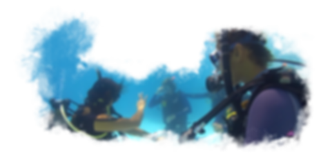 Discover Scuba Diving Image 1.png