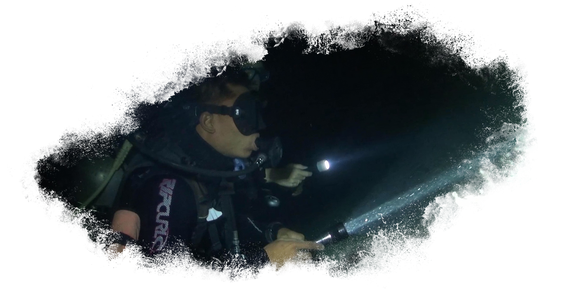 Night-Diver.png