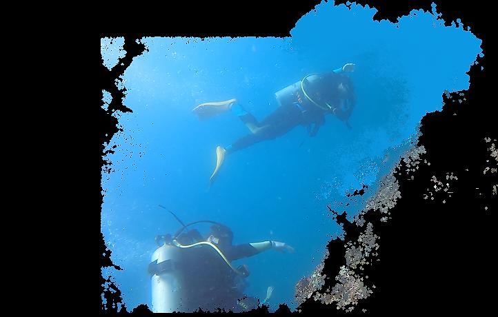 Diving in Hong Kong.png