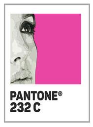 Pantone 232c Angelina