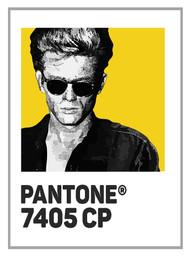 Pantone 7405cp James