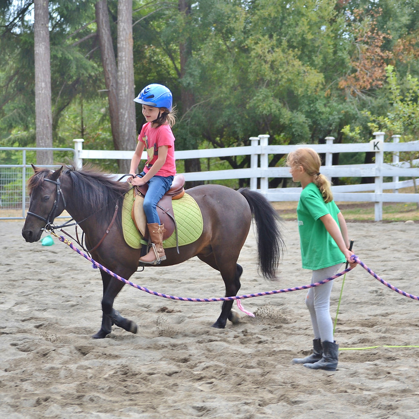 Pony Camp - July 31-August 3, 2018