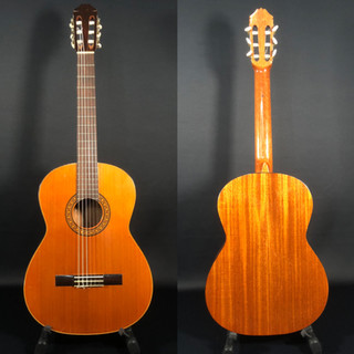 Anonymous student guitar